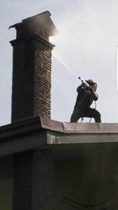 Disinfestazione Roma: vespe