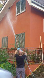 disinfestazione roma vespe
